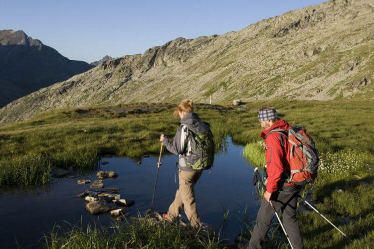 Almwanderung im Zillertal