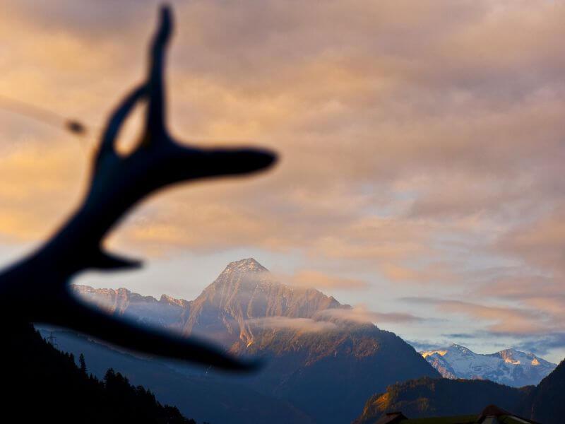 Natur und Bergwelt Region Zillertal